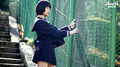 Kogal Standing Against Green Fence Short Hair